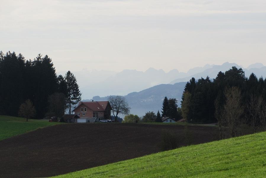 RW 19 Liebenweiler