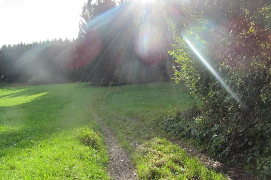 RW 17 Wiesenweg