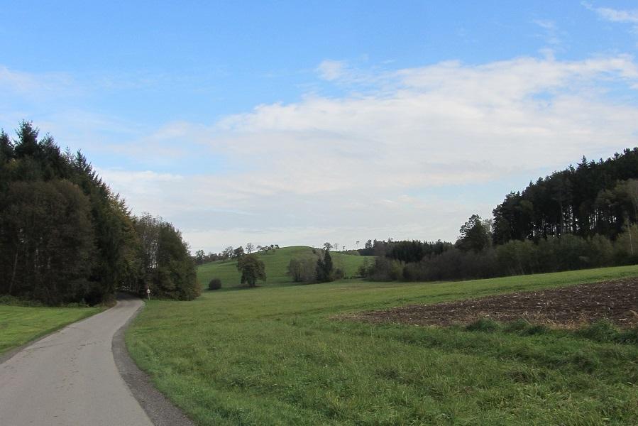 RW 19 Liebenweiler Str quer