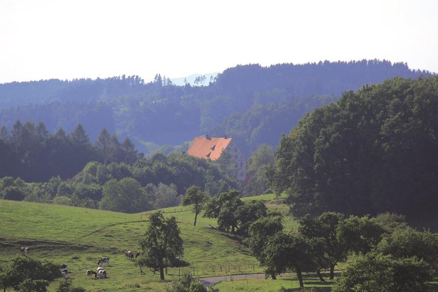 Panoramaweg Schloss